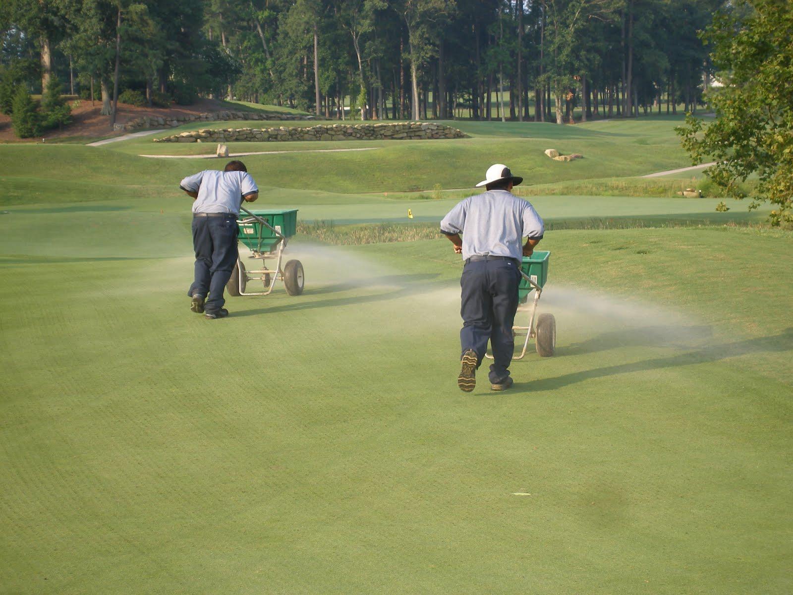Golf Course Maintenance - Topdressing Greens